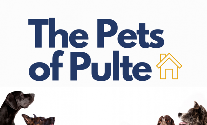 #PultePets Staying Safe and Washing our Paws